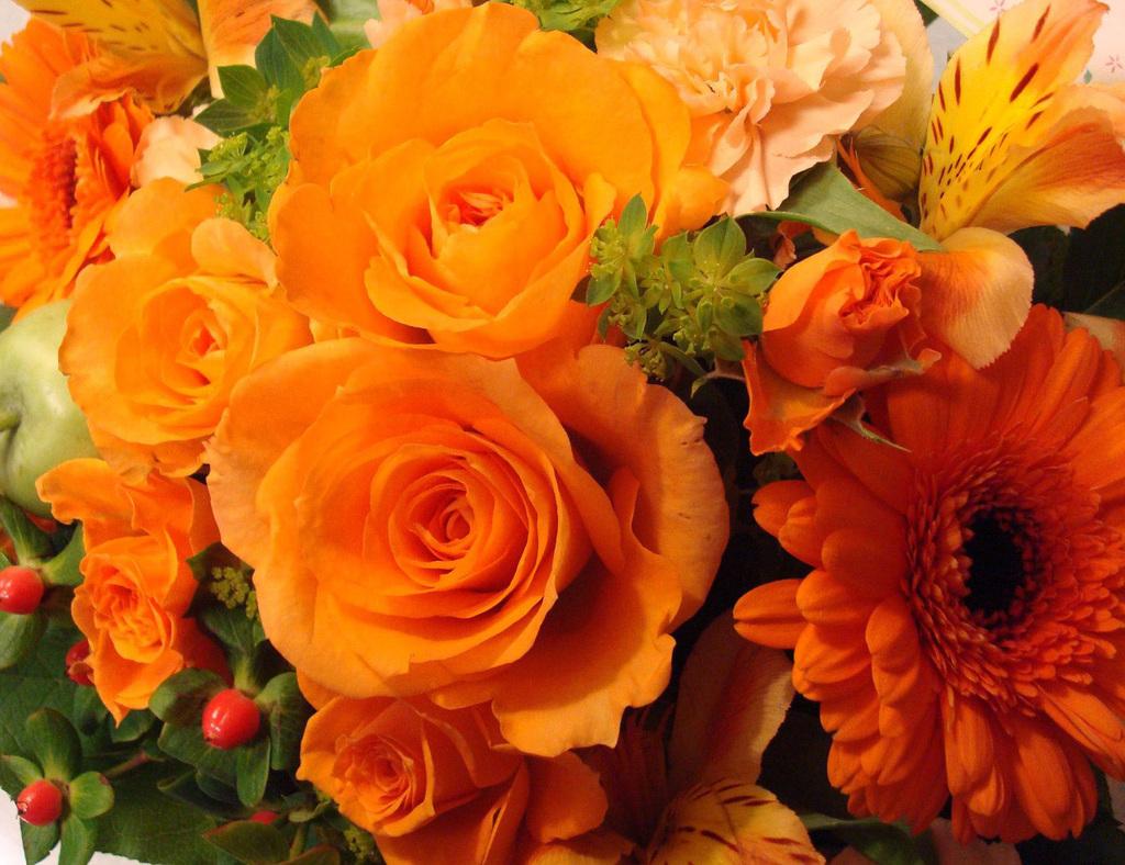 с днем рождения картинки цветы оранжевые